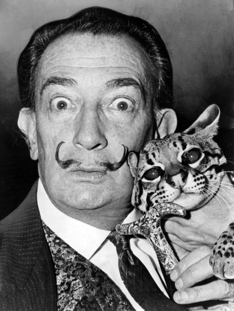 Dali and cat